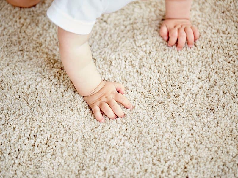 Carpet Flooring Excellent