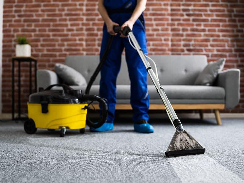 Carpet Vacuum Cleaner Home