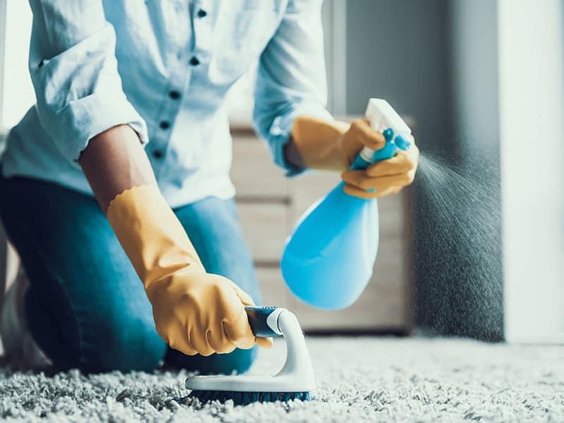 Cleaning Carpet Brush