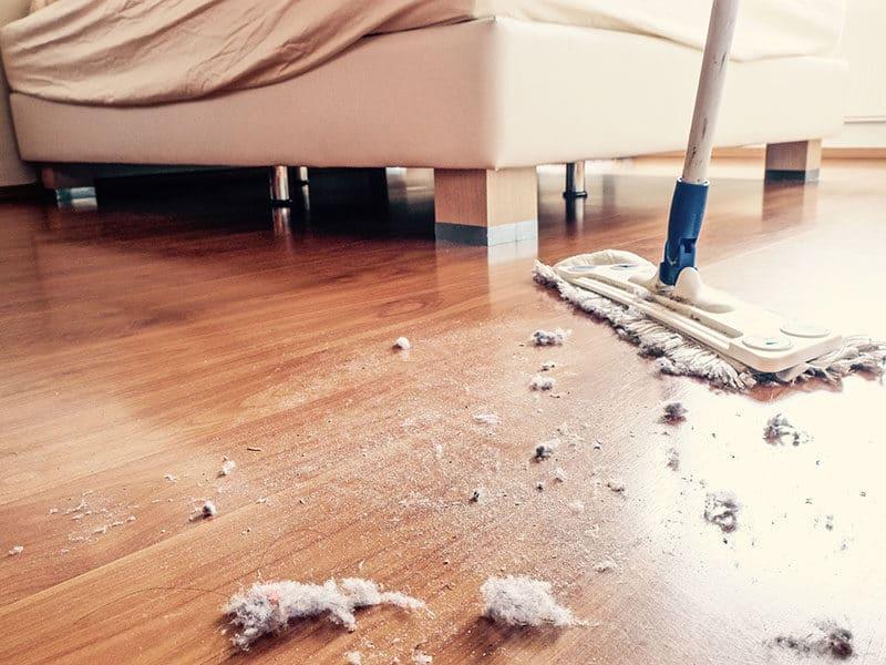 Wood Floors Look Dull
