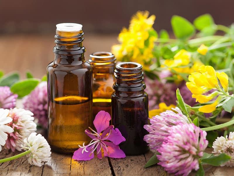 Oils Medical Flowers Herbs